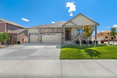 Castle Rock Single Family Home Active: 5908 High Timber Circle