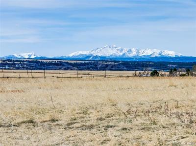 Castle Rock CO Residential Lots & Land Active: $595,000