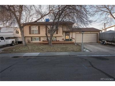 Longmont Single Family Home Active: 2369 Bowen Street