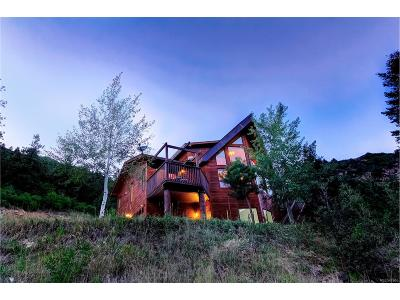 Jefferson County Single Family Home Under Contract: 16133 West Deer Creek Canyon Road