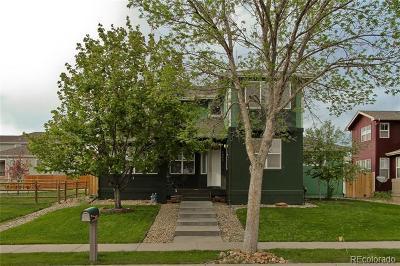 Longmont Single Family Home Active: 1911 Marti Circle
