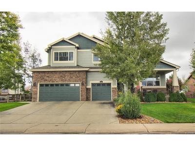 Longmont Single Family Home Under Contract: 11789 Pleasant View Ridge
