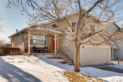 Highlands Ranch Single Family Home Under Contract: 6296 Nassau Court