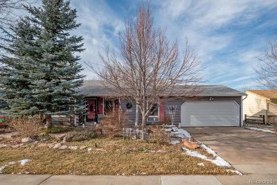 Castle Rock Single Family Home Under Contract: 981 Mountain View Drive