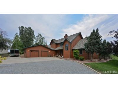 Longmont Single Family Home Active: 1328 State Highway 66 Highway