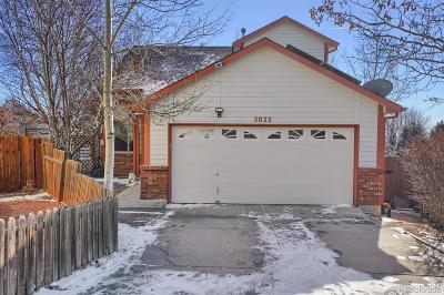 Colorado Springs Single Family Home Active: 5023 Galileo Drive