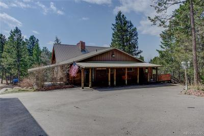 Conifer Single Family Home Active: 30262 Kings Valley E.