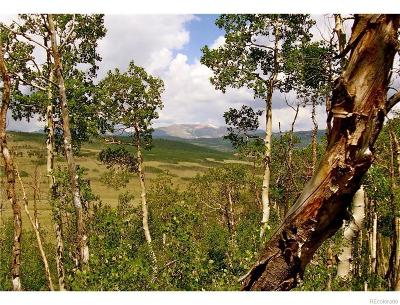 Park County Residential Lots & Land Active: 2327 Gap Road