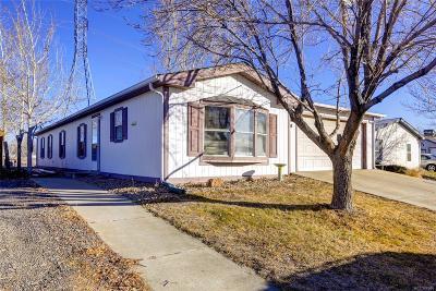 Lochbuie Single Family Home Active: 408 Locust Avenue