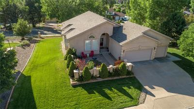 Colorado Springs Single Family Home Active: 3640 Masters Drive