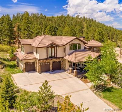 Castle Rock Single Family Home Active: 2162 Sierra Verde Court