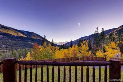 Leadville Single Family Home Active: 300 Buckeye Creek Road