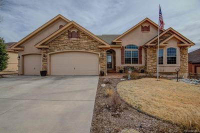 Monument Single Family Home Under Contract: 15971 Bridle Ridge Drive
