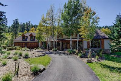 Evergreen Single Family Home Under Contract: 391 Soda Creek Road