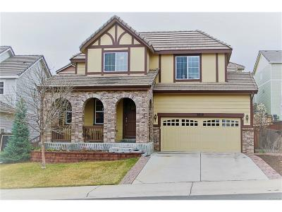 Castle Rock Single Family Home Active: 2828 Shadow Dance Drive