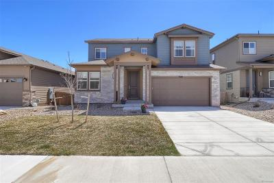 Castle Rock Single Family Home Active: 3676 Ghost Dance Drive