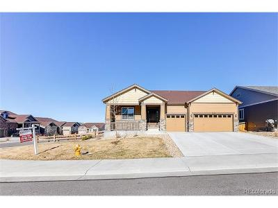 Castle Rock Single Family Home Active: 7239 Oasis Drive