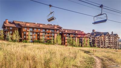 Steamboat Springs Condo/Townhouse Active: 2420 Ski Trail Lane #406