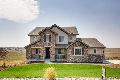 Douglas County Single Family Home Active: 8780 Hurlingham Loop