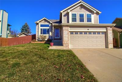 Arvada Single Family Home Active: 6084 Zang Way