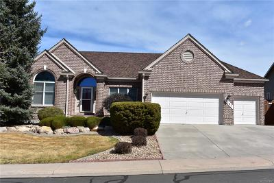 Castle Rock Single Family Home Under Contract: 5163 Mountain Meadow Trail