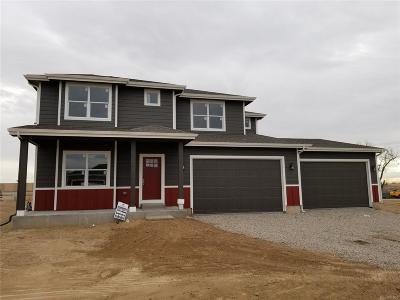 Hudson Single Family Home Active: 430 Wyatt Drive