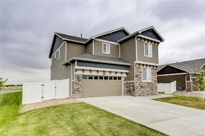 Single Family Home Active: 899 Shirttail Peak Court