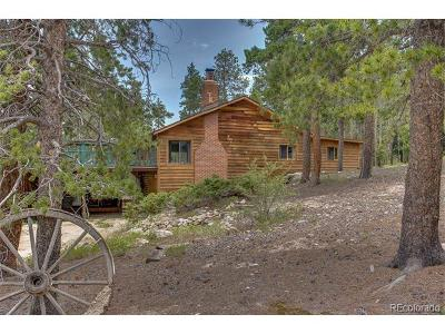 Golden Single Family Home Under Contract: 11 Eagles Nest Lane