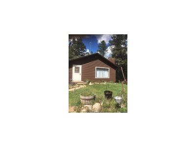 Conifer Single Family Home Under Contract: 29225 South Sunset Trail