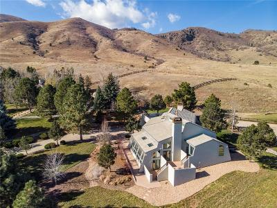 Littleton CO Single Family Home Active: $1,200,000