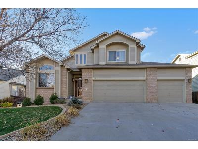 Parker Single Family Home Active: 16873 Boreas Court