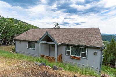 Evergreen Single Family Home Active: 541 Paiute Road