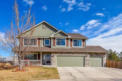 Castle Rock Single Family Home Under Contract: 376 Hampstead Avenue