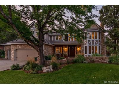 Highlands Ranch Single Family Home Active: 58 Falcon Hills Drive