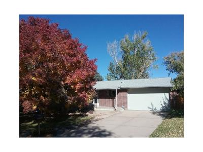 Northglenn Single Family Home Under Contract: 10644 Tancred Street