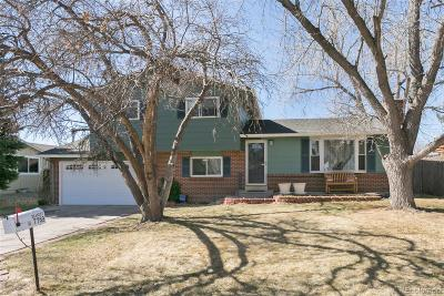 Littleton Single Family Home Under Contract: 7769 South Fenton Street