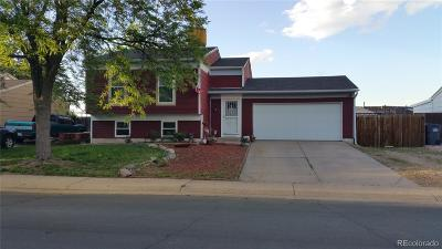 Aurora Single Family Home Active: 20737 East Coolidge Place