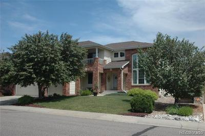 Highlands Ranch Single Family Home Active: 9702 Millstone Court
