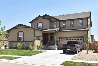 Dacono Single Family Home Active: 3308 Raintree Lane