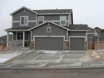 Castle Rock Single Family Home Active: 7708 Bandit Drive