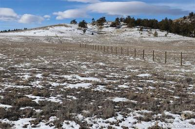 Hartsel Residential Lots & Land Active: 1192 Corral Road