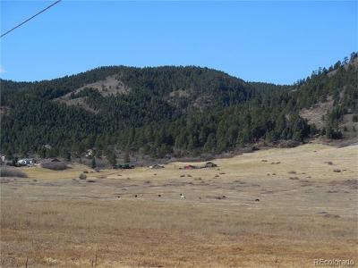 Larkspur Residential Lots & Land Active: 15746 South Perry Park Road