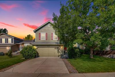 Parker Single Family Home Active: 16650 Martingale Drive