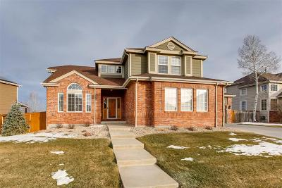 Highlands Ranch Single Family Home Under Contract: 10273 Knoll Circle