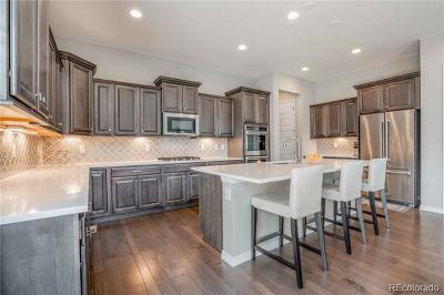 Anthem Highlands Single Family Home Active: 15973 Swan Mountain Drive
