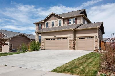 Parker Single Family Home Active: 16095 Savory Circle