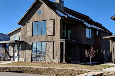 Steamboat Springs Single Family Home Active: 800 Twilight Lane