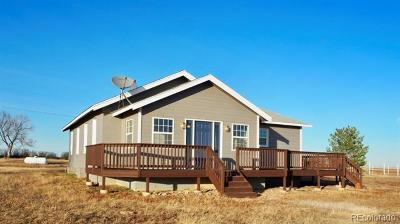 Elbert County Single Family Home Active: 14986 Road 181