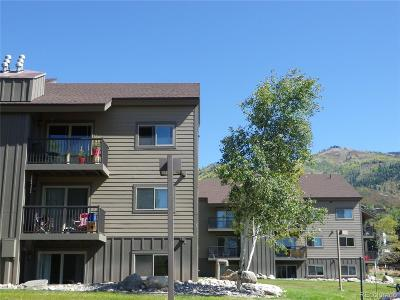Steamboat Springs Condo/Townhouse Active: 1555 Shadow Run Court #301