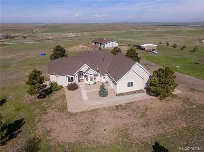 Elizabeth CO Single Family Home Active: $800,000
